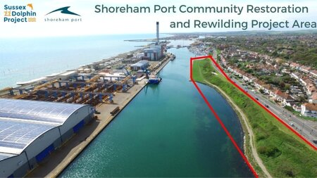 Shoreham Port & Sussex Dolphin Project Rewilding Area